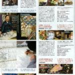 Magazines_04